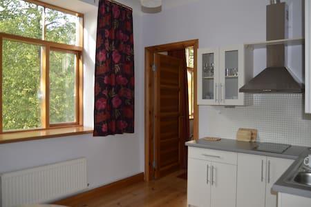 Charming and comfortable apartment - Riga - Lägenhet