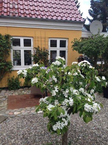 Dejligt romantisk hus med stor have - Jystrup - Casa