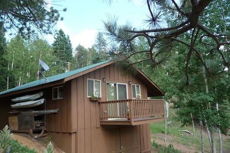 Aspen Hideaway Mountain Cabin