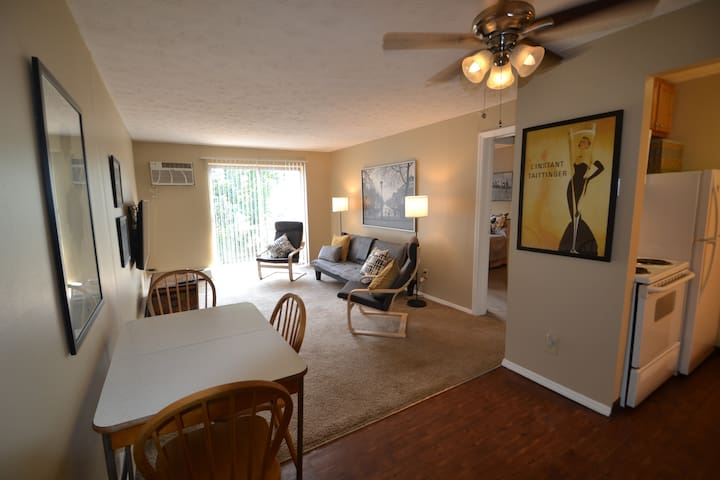 R-24 Great  1BR furn apt in center of city