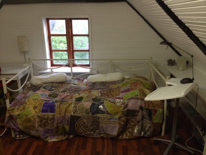 Privat værelse tæt på strand og skov