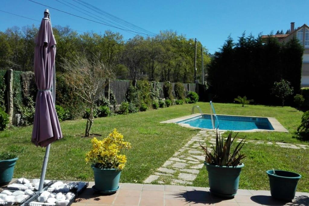 Vista de la piscina y el jardin