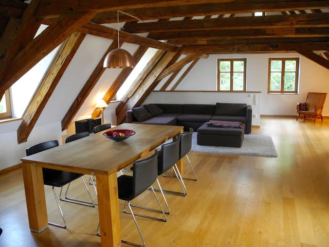 Lux. guestsuite (130 sqm) in the heart of Oldtown