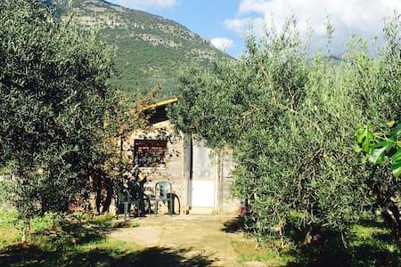 Casetta tra gli ulivi - Terracina