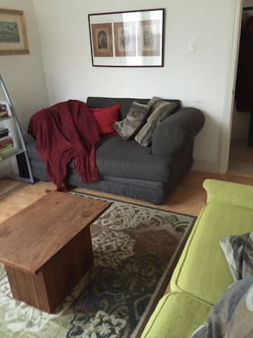 Living Room with 2nd sofa