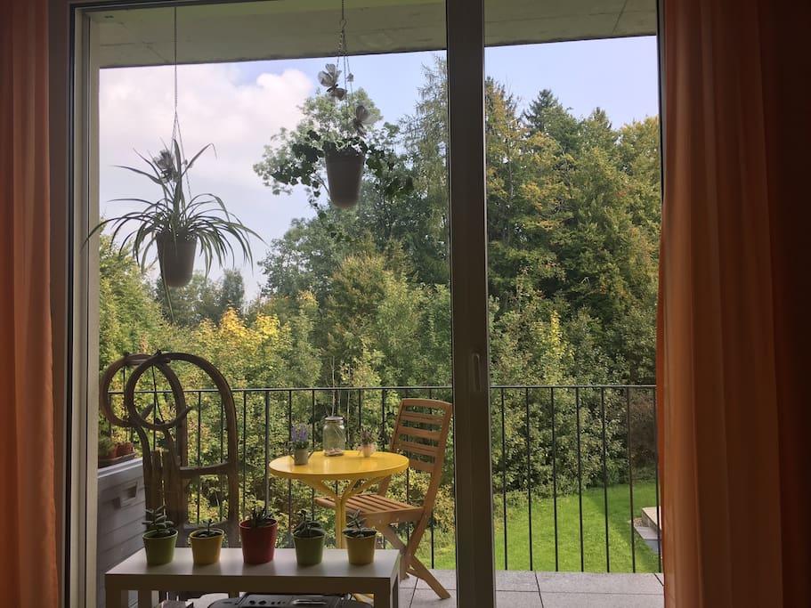 Aussicht vom Schlafzimmer / view from bedroom