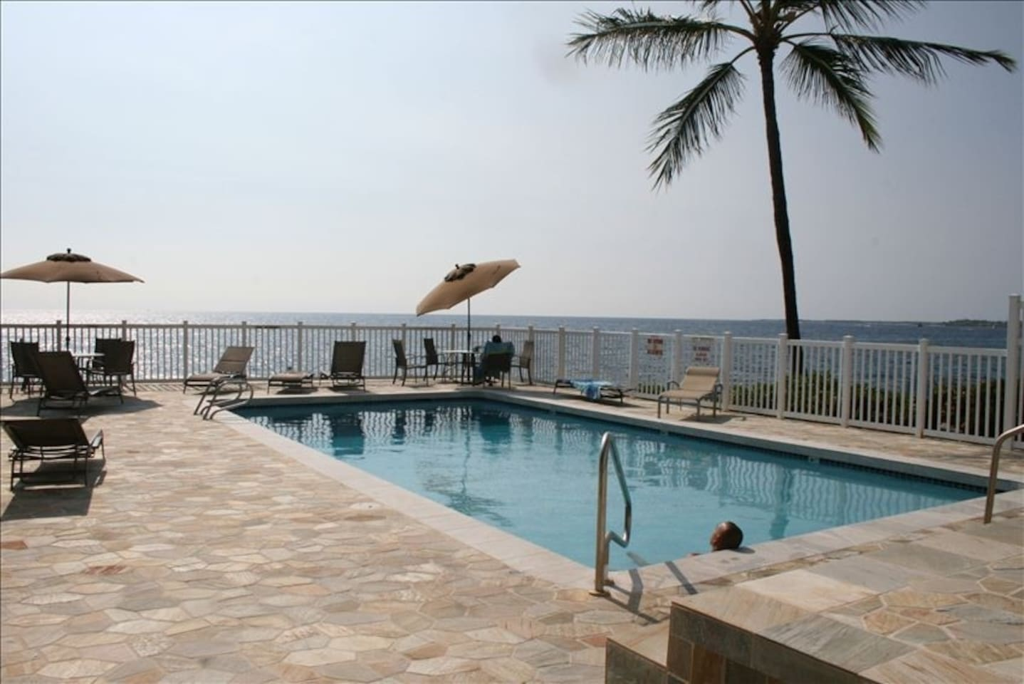 Ocean front pool - dolphin sightings common!