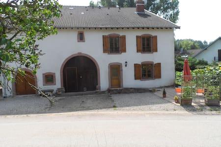 Sapin - Saint-Dié-des-Vosges