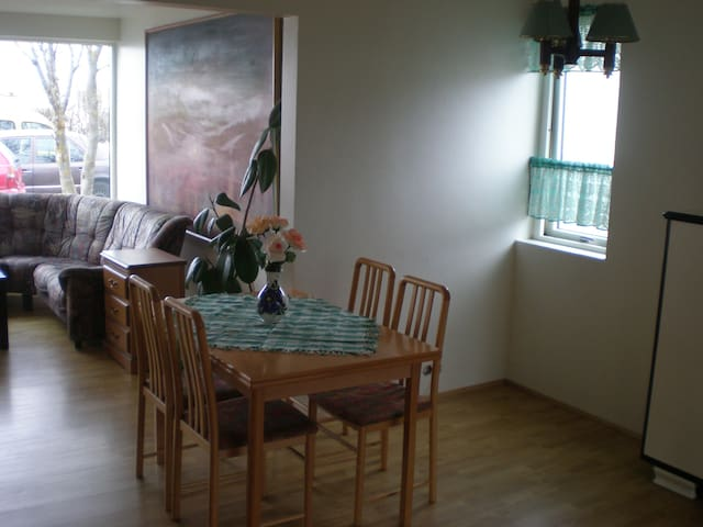One bedroom apartment, car included - Seltjarnarnes - Appartement