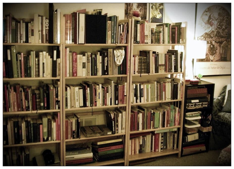 Living Room - enjoy my books and DVDs!