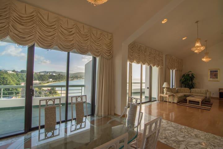 Penthouse Panoramic Oceanview Condo