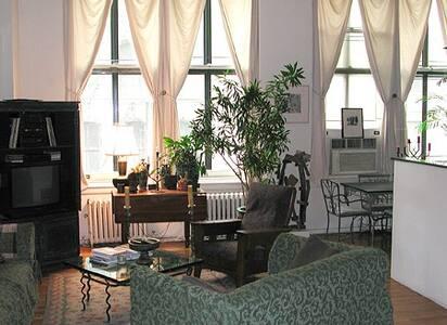 tribeca loft apartment lightfilled  - New York