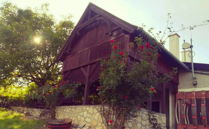 Ház a hegyoldalban, balatoni panoráma & nyugalom