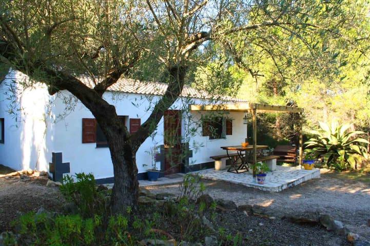 Charming recently built cottage - L'Ametlla de Mar - Bangalô