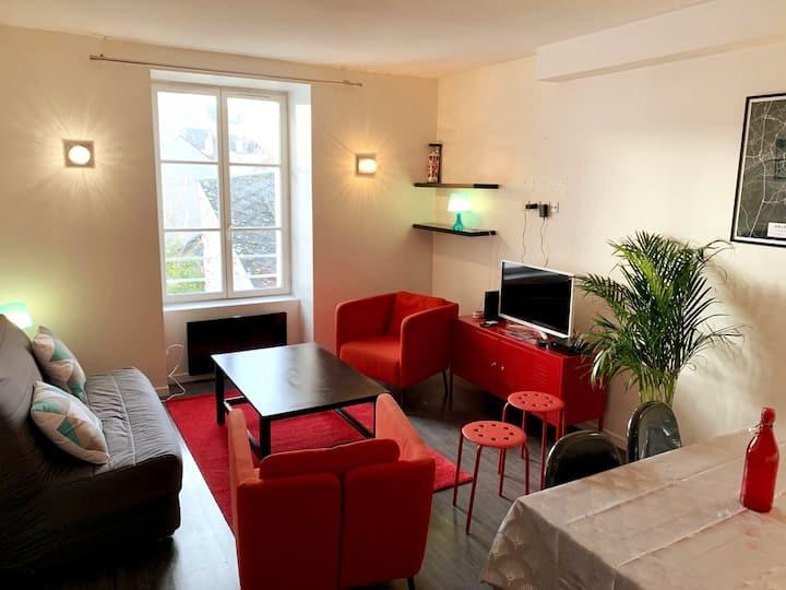 Bel Appartement de 55 m2 + Jardin en hyper-centre