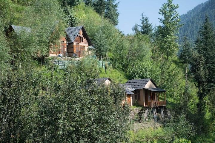 Swiss Cottage with Loft in Jibhi