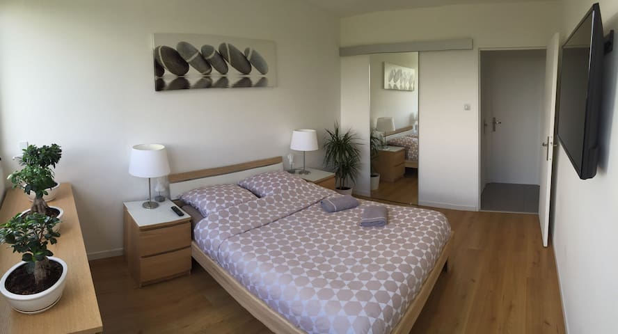 Colmar - Spacious and comfortable 3 rooms of 75m2