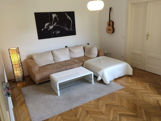 Tom's City Apartment Schwedenplatz - Wenen - Appartement