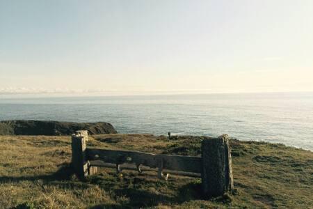 Mendocino Ocean View Heavenly Home - Little River