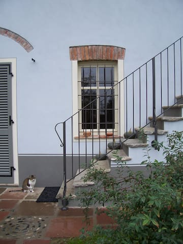 Borgo Alto Bed and Breakfast - Gassino Torinese - Penzion (B&B)