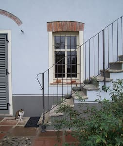 Borgo Alto Bed and Breakfast - Gassino Torinese