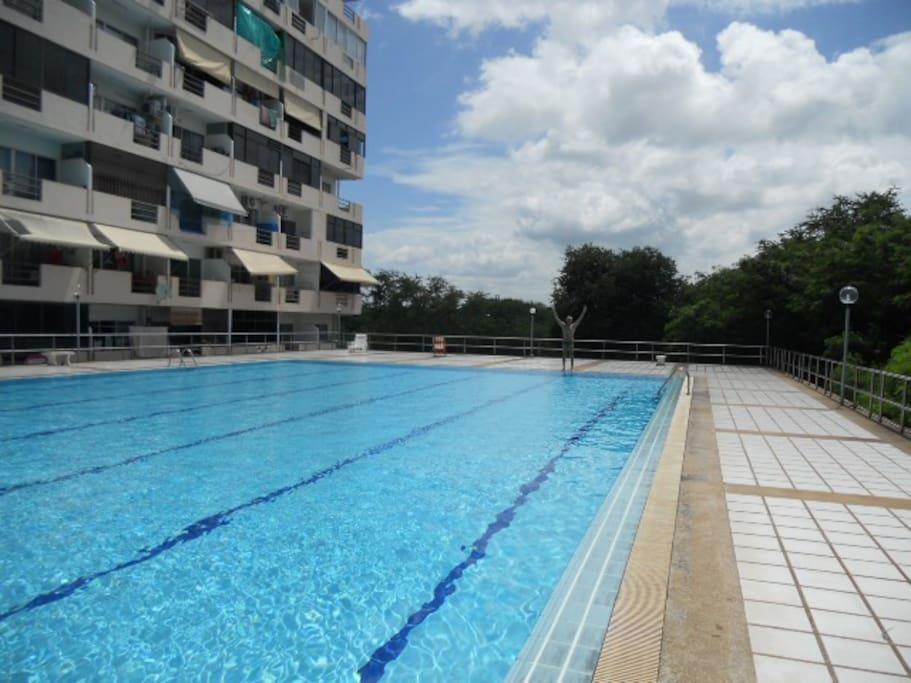belle piscine de 30 mètres , toilette douche , bains de soleil .petit bassin