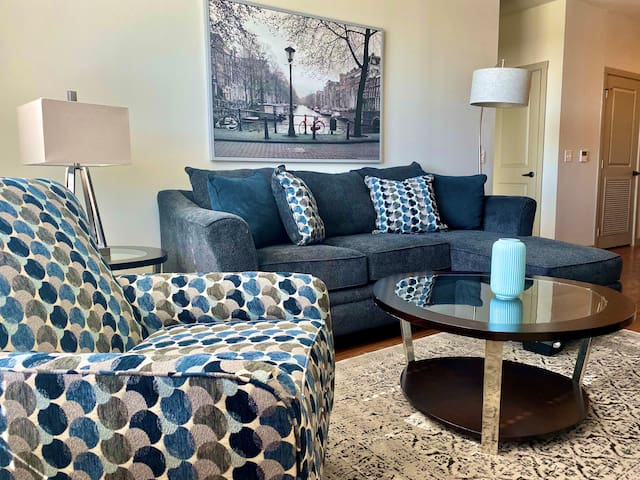 Frisco/Plano/North Dallas 1 BR Corporate Apt (424)