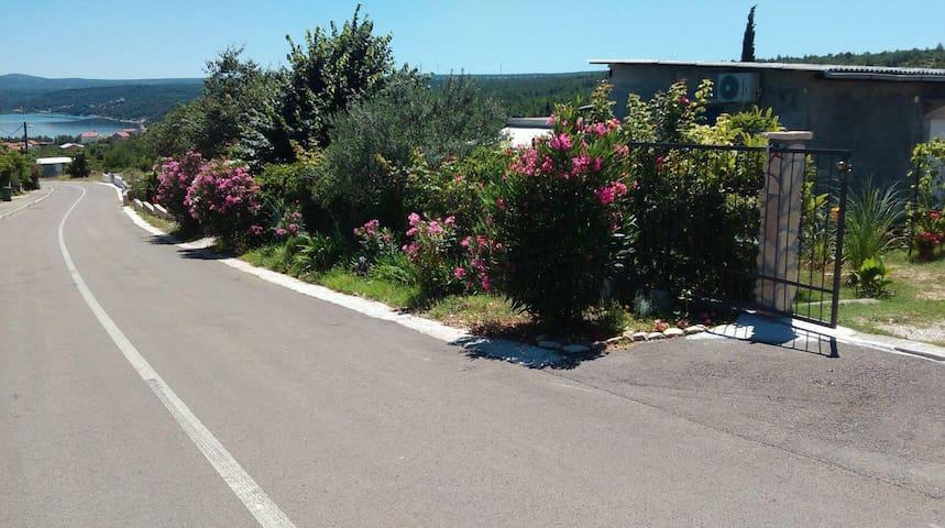 Apartman oleander - Pridraga - Haus