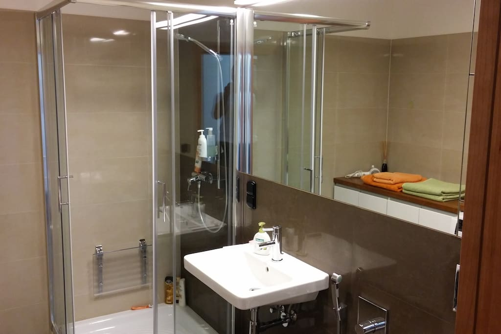 Your private bathroom with shower, toilet and full equipment. Also washing/drying machine is available