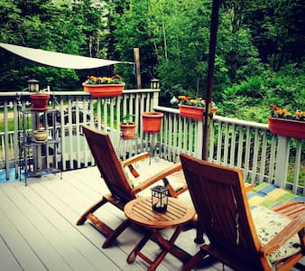 Eclectic 4bdrm Ski House  w/hot tub - Roxbury - House