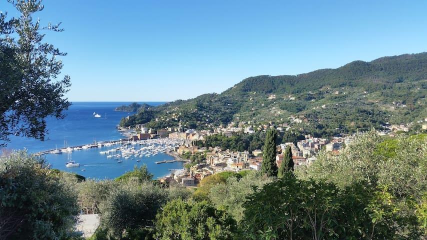 Ortensia - Vista mozzafiato - relax e tranquillità - Rapallo - Dom