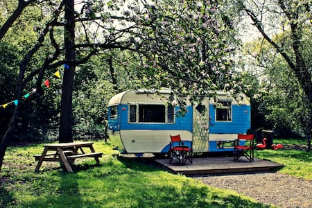 Retro B&B glamping, South Norfolk - Mundham