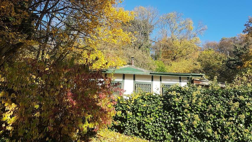 hideaway  Herbst in Wien