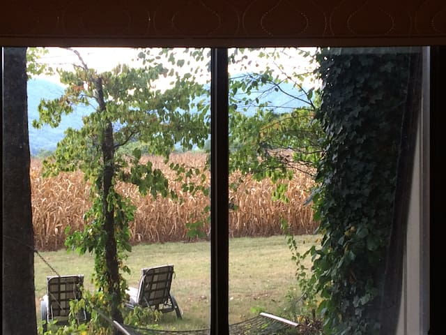 The view from your room (taken by a guest.)