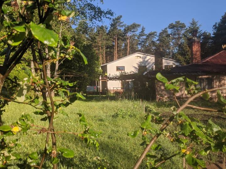 Świętokrzyskie - dom z widokiem na las studio