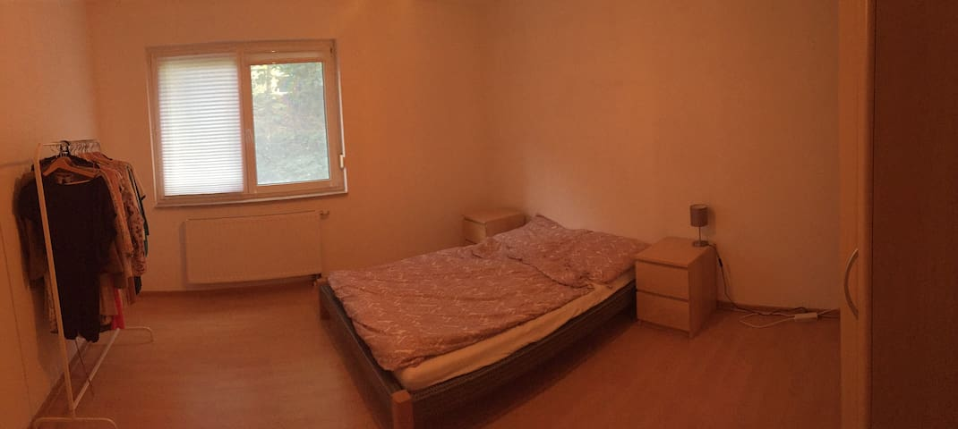 Spacious private room in Jena, close to the center - Jena - Apartamento