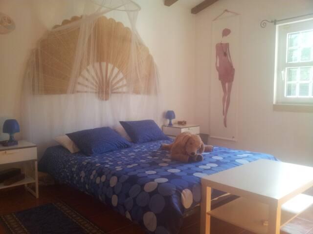 Chambre bleue dans le Ribatejo - Santo Estevão Benavente - Penzion (B&B)