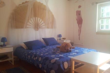 Chambre bleue dans le Ribatejo - Bed & Breakfast