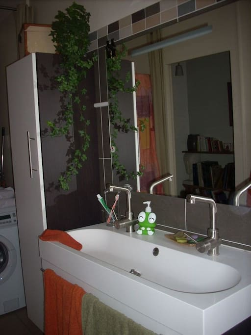 Salle de bain et WC indépendants