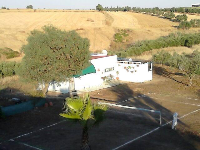 Finca de Olivos d.recreo, Andalucia - Gibraleón - Cabana