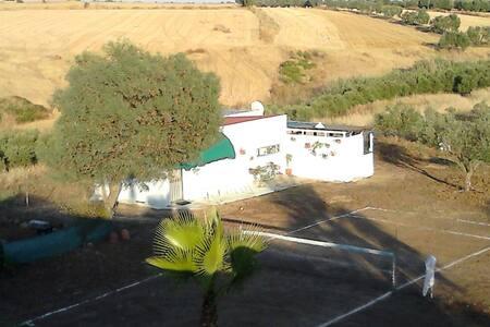 Finca de Olivos d.recreo, Andalucia - Gibraleón