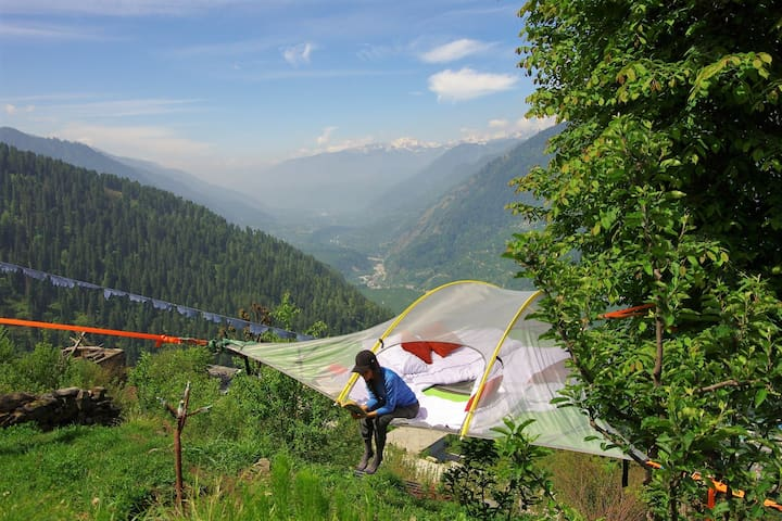 Escape to Hamta: a tree-camping nature experience