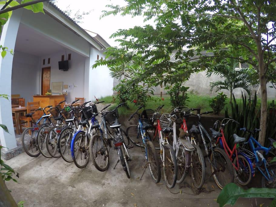 bike for free