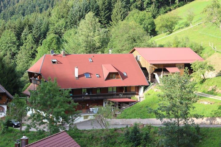Familienwohnung Nr.6 Ferienparadies Maierbauernhof