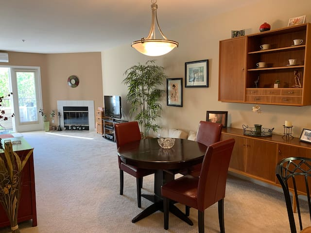 Stylish & Modern Condo in Downtown Novato