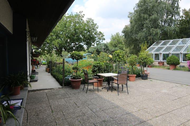 Ruhige FeWo mit schöner Aussicht bei Trier