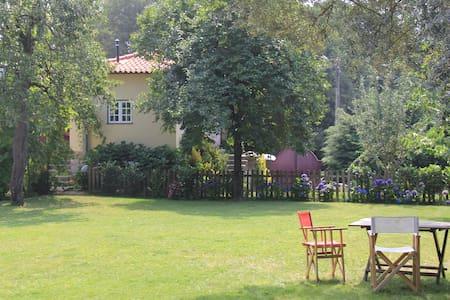 Casa São Vicente de Cima - Póvoa de Lanhoso - 別荘