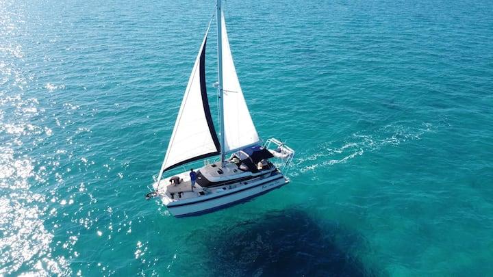 Bahama Catamaran Boat in Paradise.