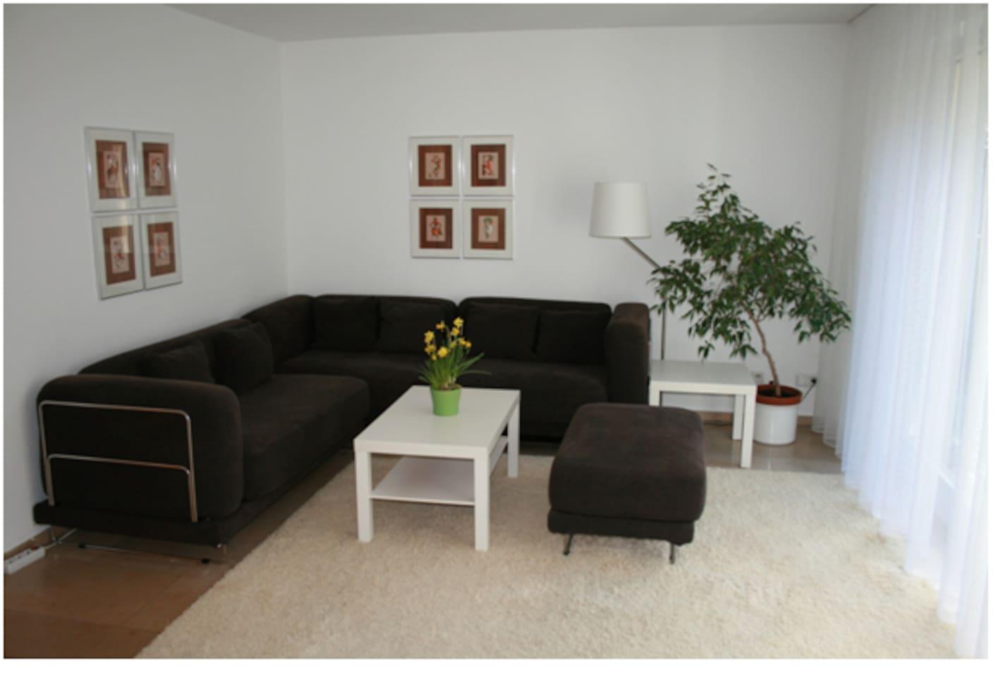Wohnzimmer mit Couchgarnitur  (ausziehbares Doppelbett)