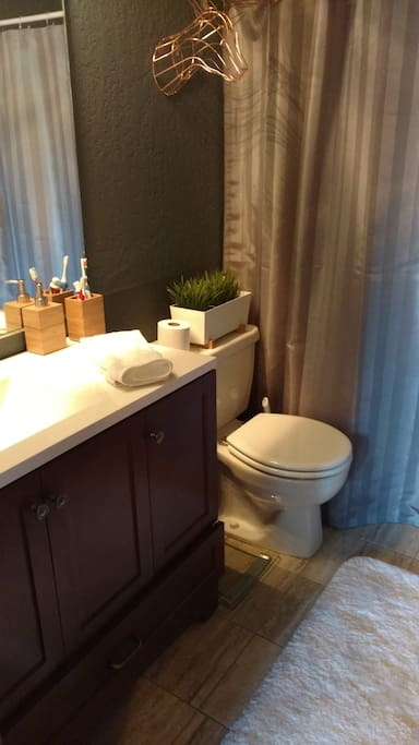 Your own  private  bathroom with shower and tub
